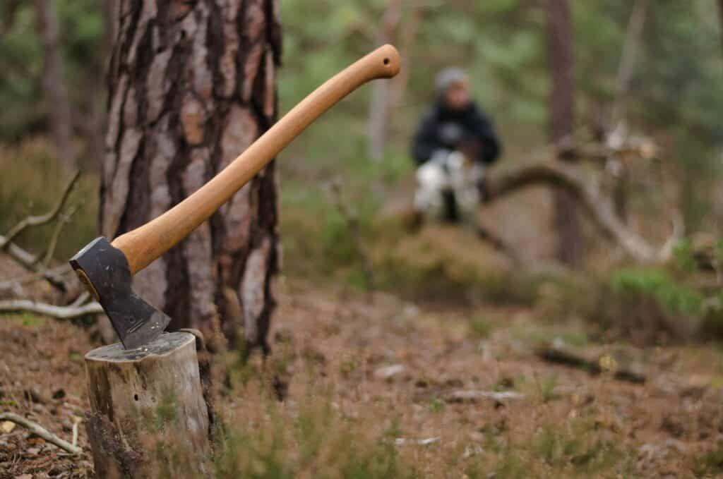 Axe in wood